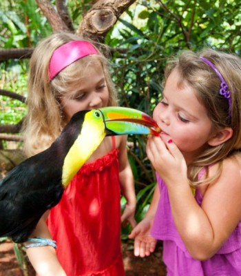 Costa Rica Family Trips
