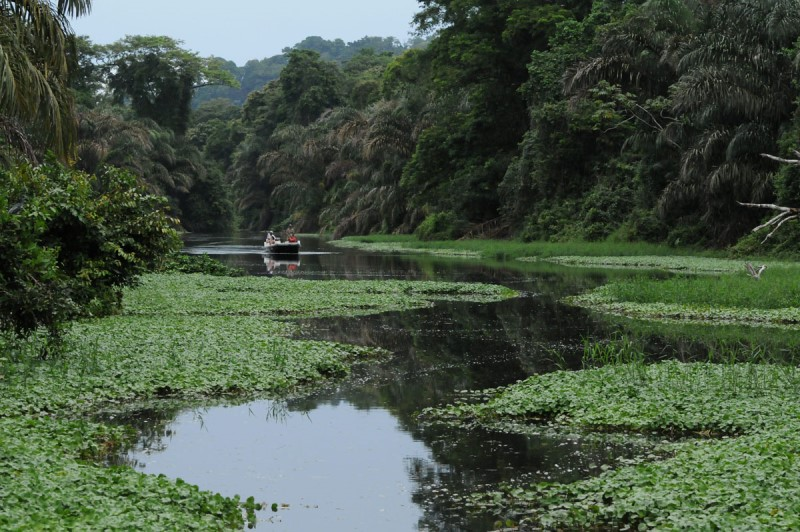 Touring the Tortuguero Canals