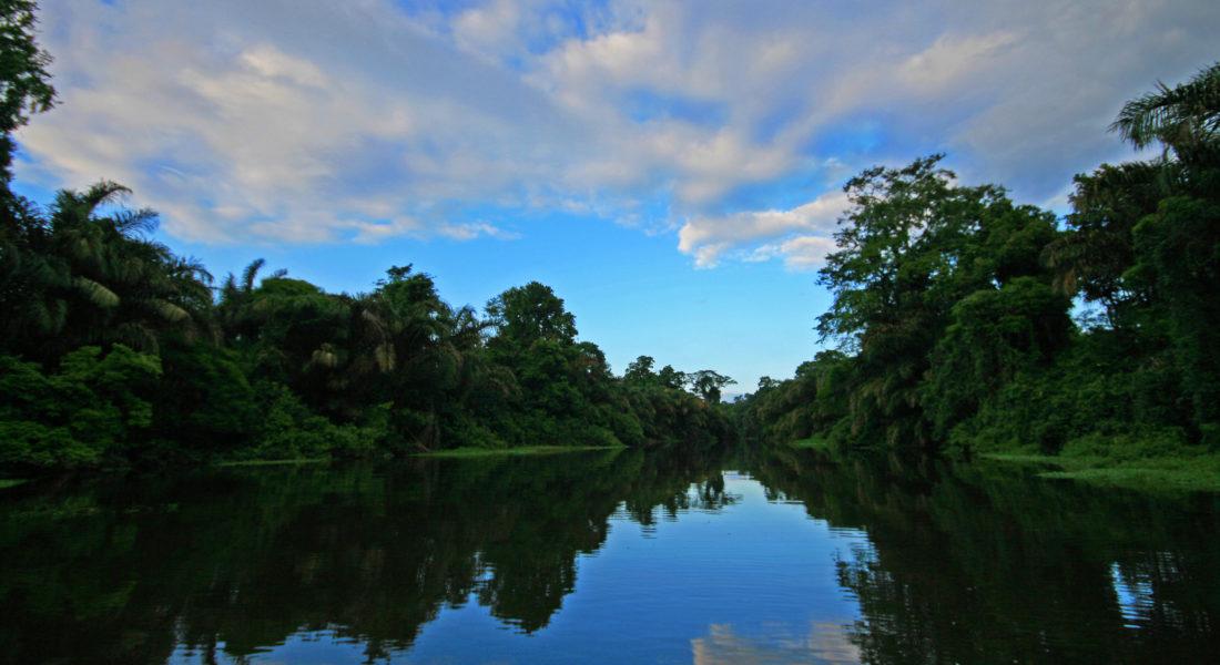 Paisaje Canal
